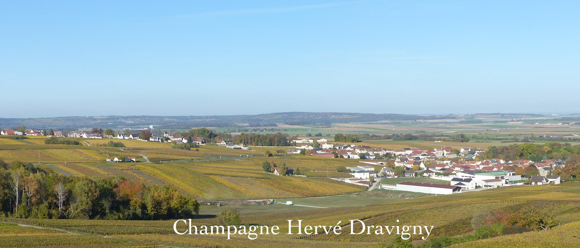 Champagne Hervé Dravigny